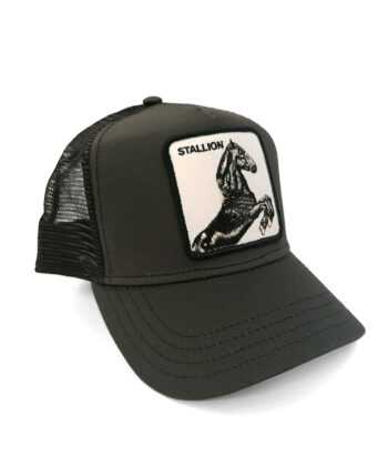 CAPPELLINO BASEBALL GOORIN BROS STALLION BLACK cappellino logo animali blue express family